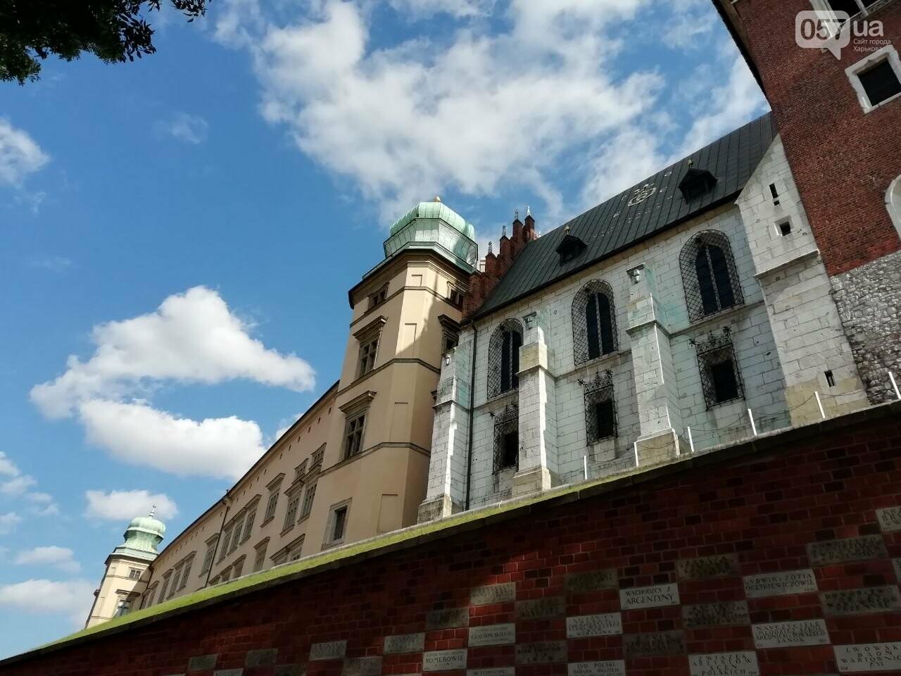 Из Харькова в Краков: Королевский замок, средневековые здания и музей под землей, - ФОТО, фото-28