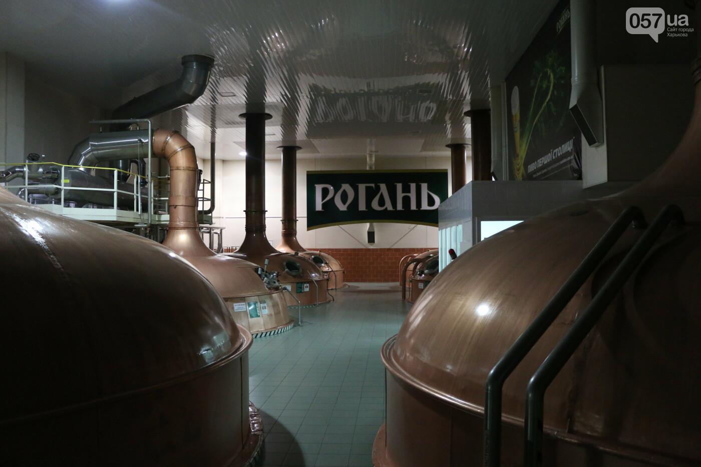 От выращивания ячменя до розлива в бутылки: как в Харькове варят пиво и что в него добавляют, - ФОТО, фото-6