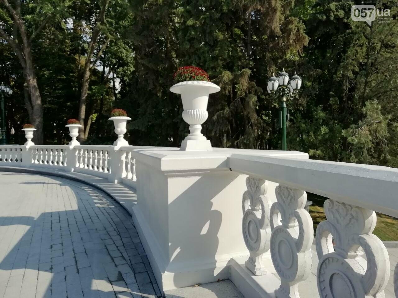 В центре Харькова появился новый фонтан и «Каскад» после реконструкции, - ФОТО, фото-17