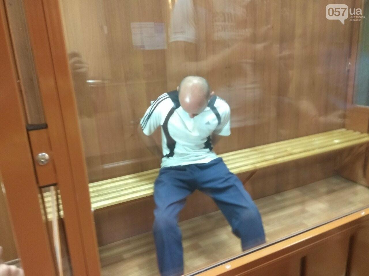 Суд по изнасилованию девочки в Харькове проходит в закрытом режиме, - ФОТО, фото-1