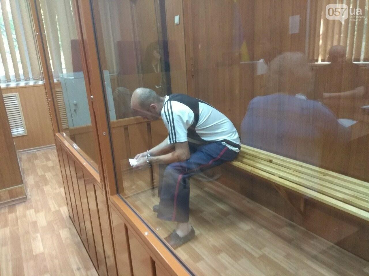 Суд по изнасилованию девочки в Харькове проходит в закрытом режиме, - ФОТО, фото-3