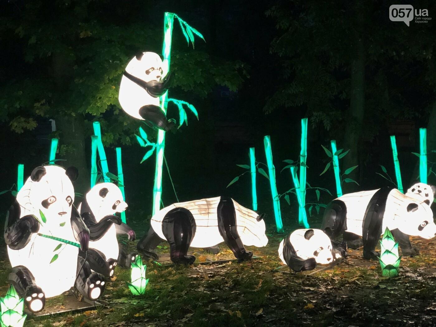 Харьков зажигает огни: что ждет посетителей Фестиваля гигантских китайских фонарей, фото-6