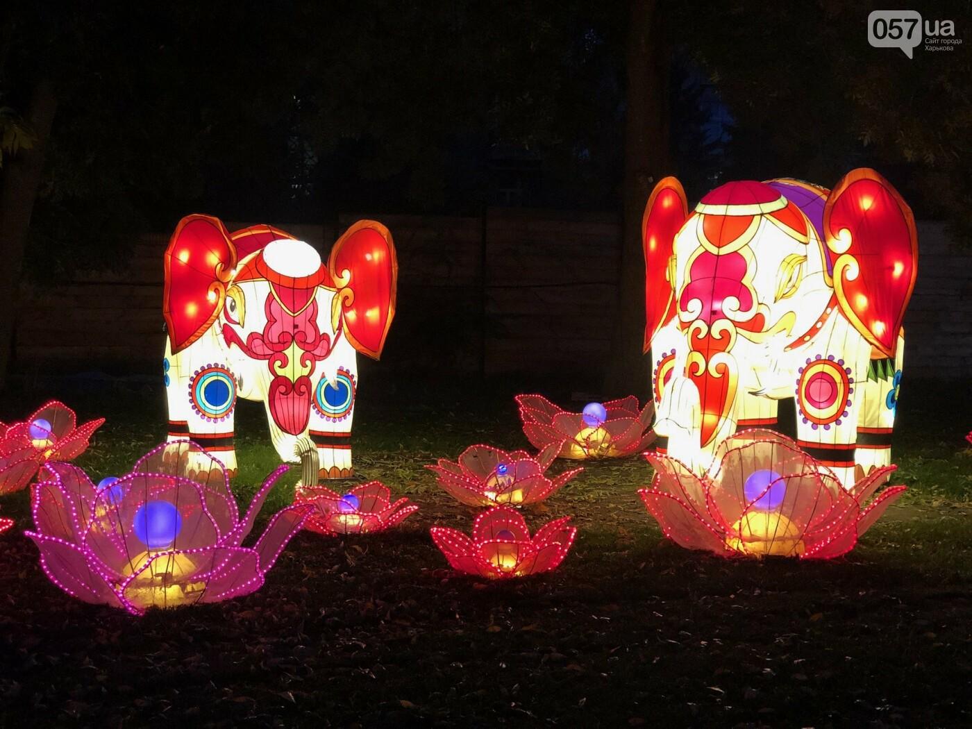 Харьков зажигает огни: что ждет посетителей Фестиваля гигантских китайских фонарей, фото-5