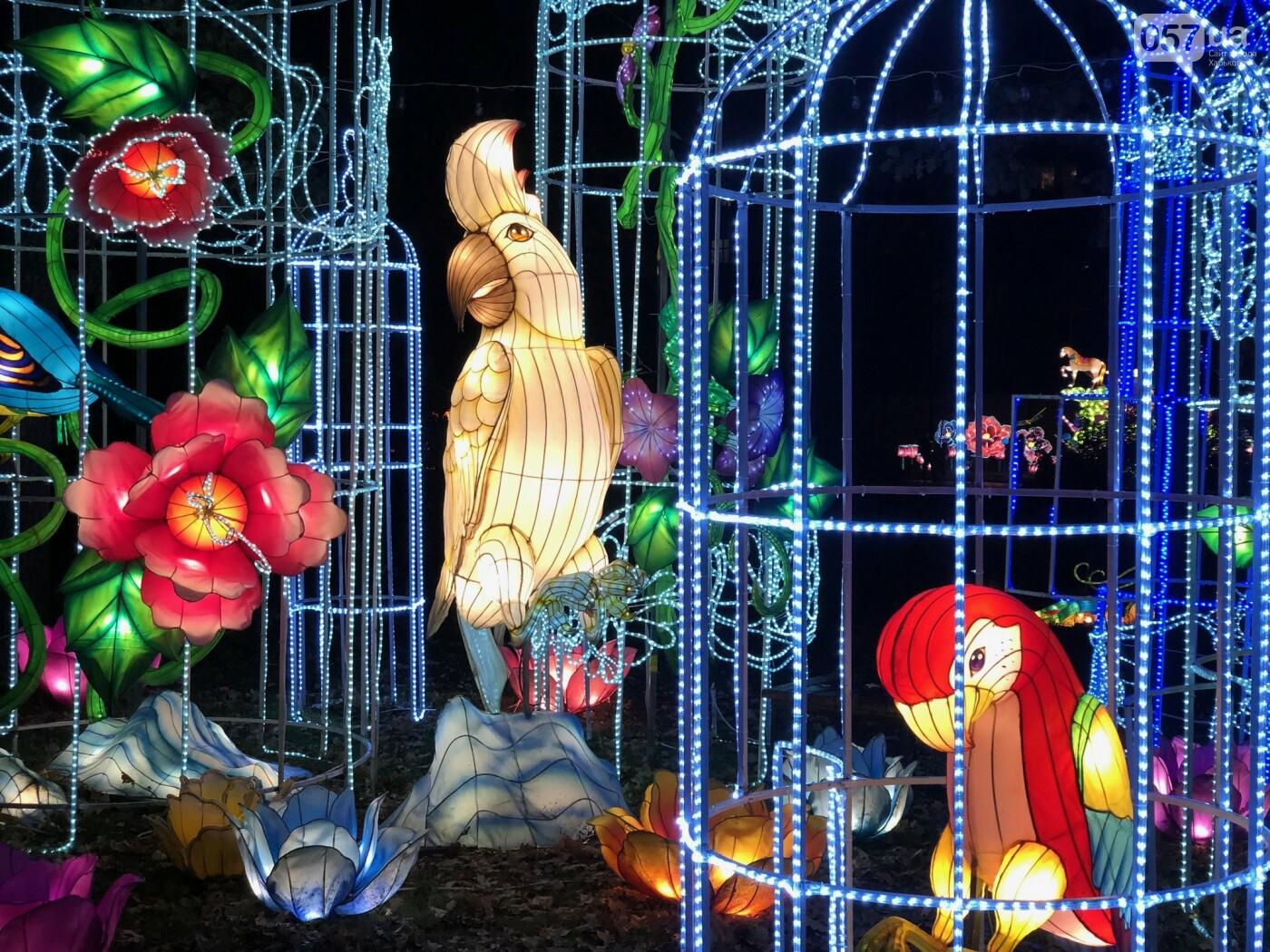 Харьков зажигает огни: что ждет посетителей Фестиваля гигантских китайских фонарей, фото-1