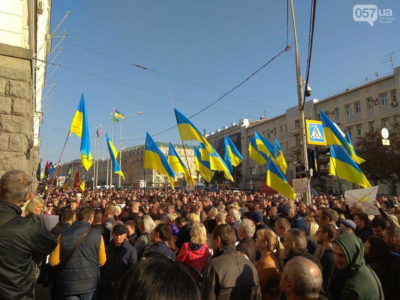 «Нам дорога не нужна»: предприниматели «Барабашово» пикетируют горсовет, - ФОТО, фото-7