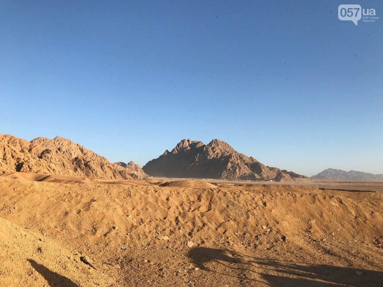 Из Харькова в Египет. Подводный мир, рассвет в пустыне и чай с бедуинами, - ФОТО, фото-10