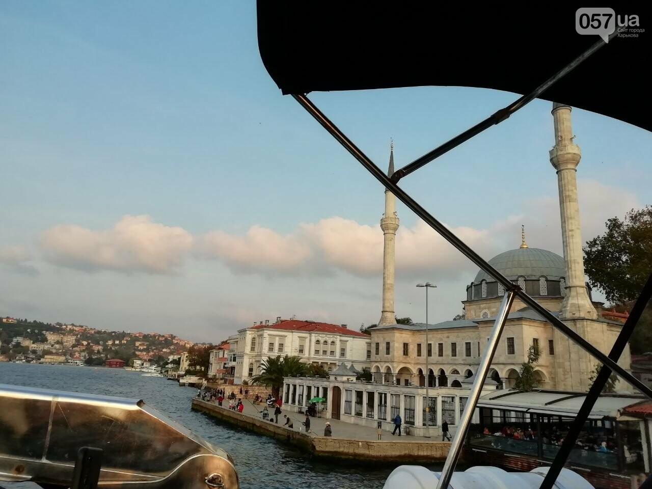 Из Харькова в Стамбул. Как добраться, что попробовать и на что посмотреть в турецком городе, - ФОТО, фото-63