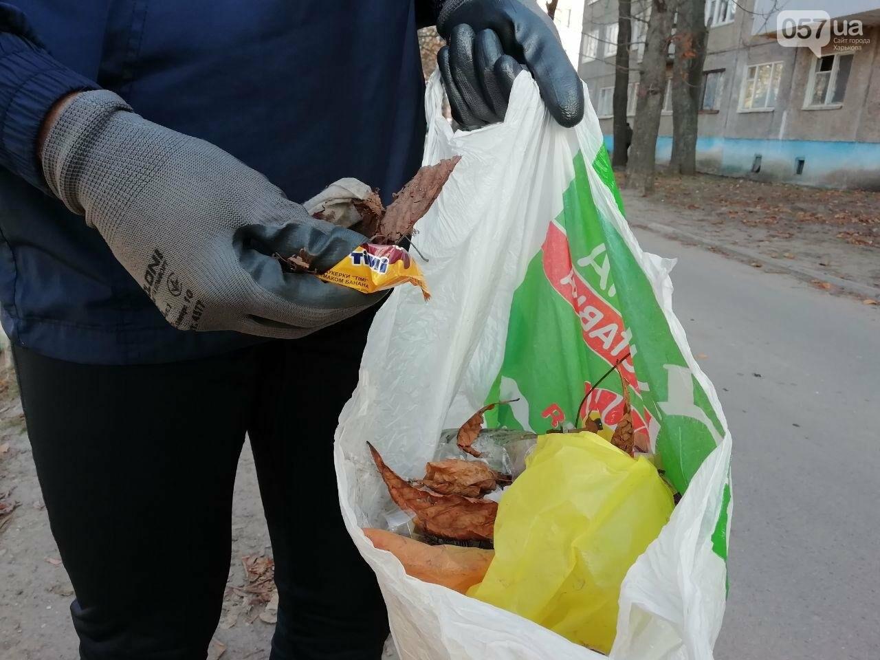 Харьковчанин собирает мусор во время пробежек. Интервью с «Бегущей бородой», - ФОТО, фото-6