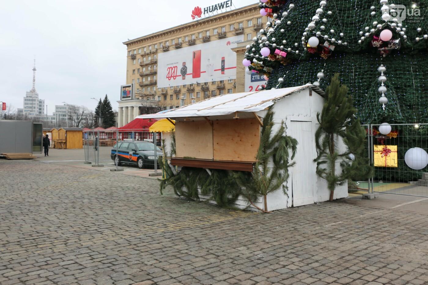 В мэрии рассказали, когда уберут елку на площади Свободы, - ФОТО , фото-6