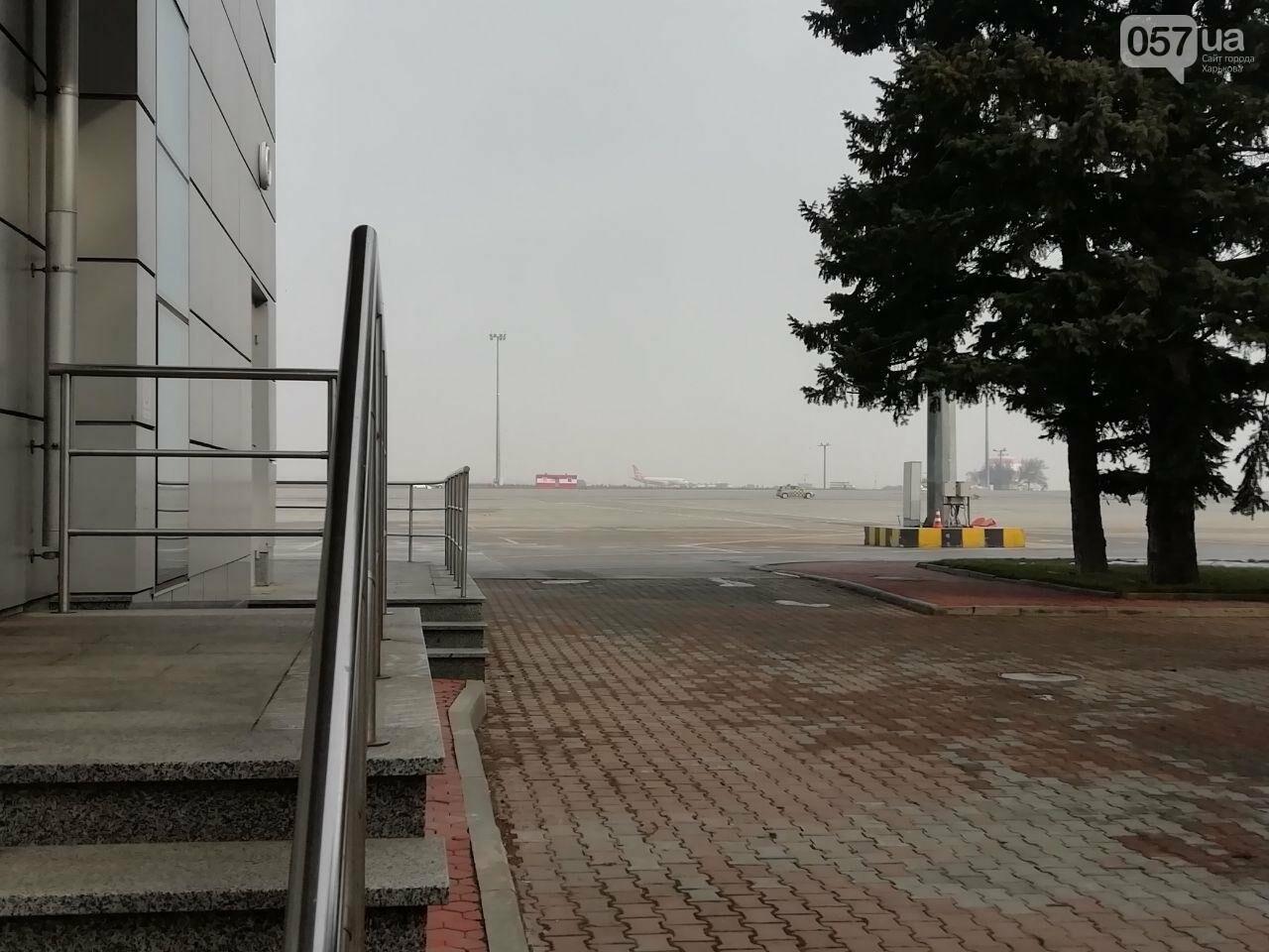 В харьковском аэропорту приземлился самолет с эвакуированными пассажирами из Китая, - ОНЛАЙН-ТРАНСЛЯЦИЯ, фото-14