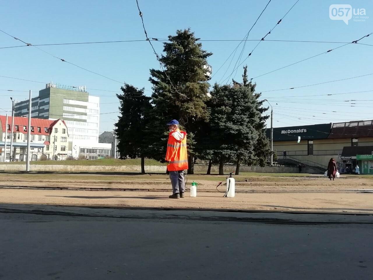 Безлюдный вокзал и дезинфекция трамваев: как живет ЮЖД во время карантина, - ФОТО, фото-17