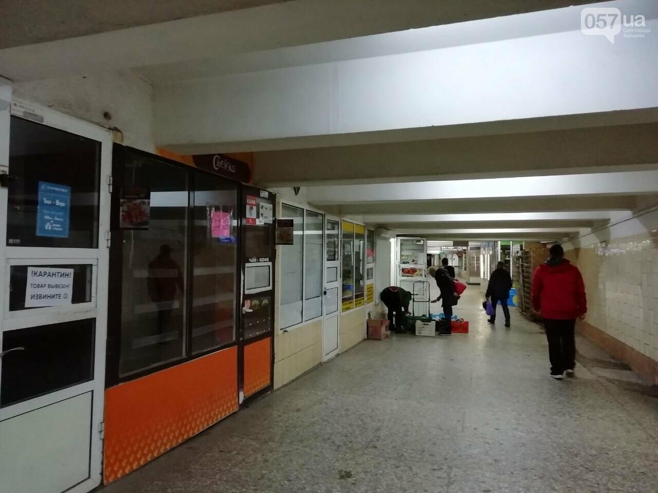 Безлюдный вокзал и дезинфекция трамваев: как живет ЮЖД во время карантина, - ФОТО, фото-6