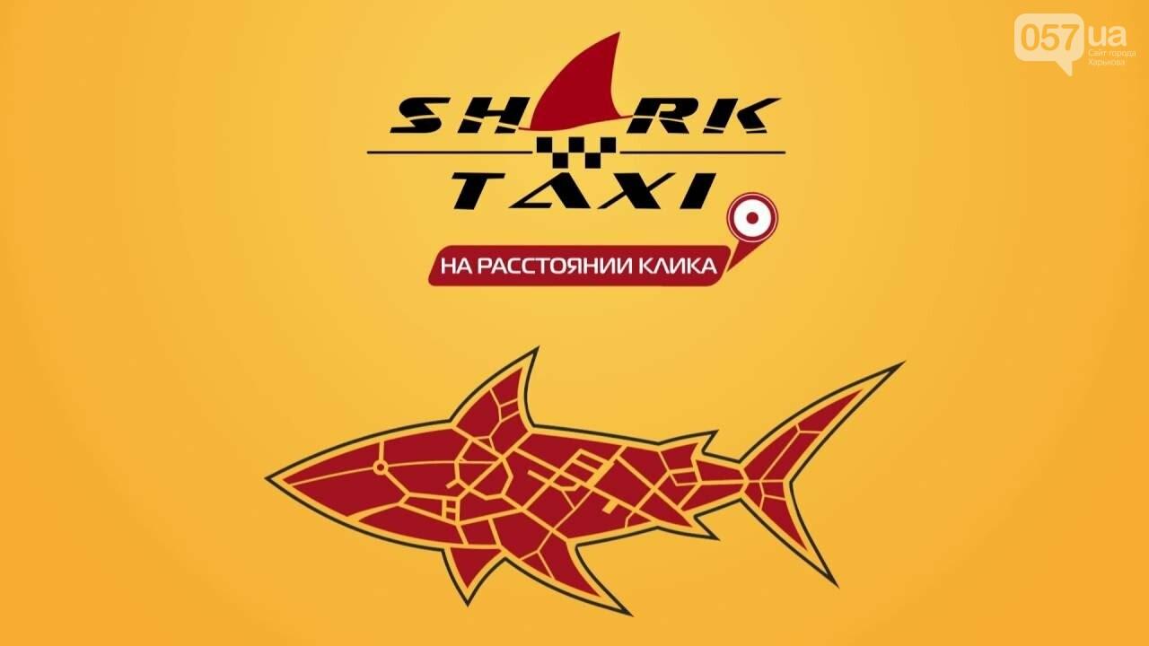 Как в Харькове работает доставка, рестораны, такси и медицинские центры: цены и условия, - ФОТО, фото-9