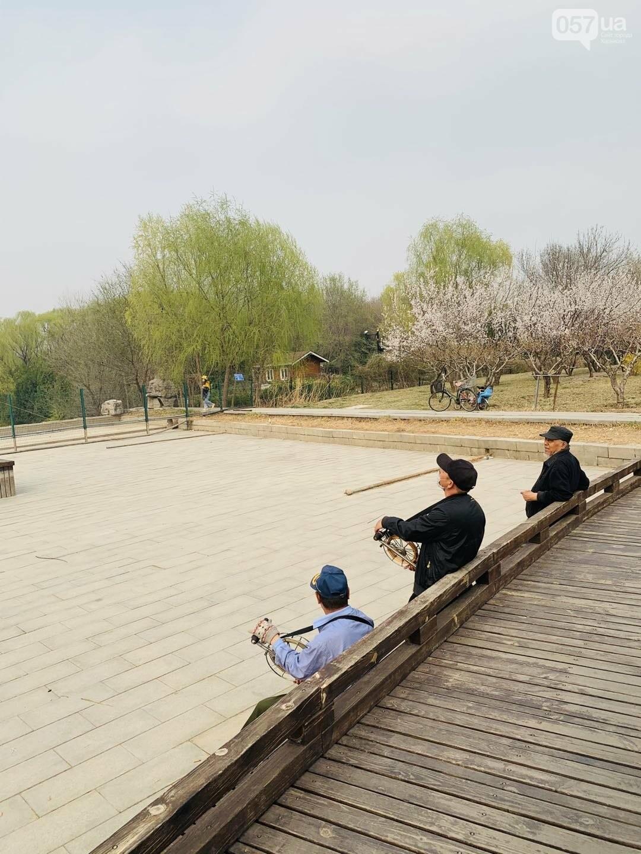 А это китайские деды запускают воздушных змеев. Они это очень любят