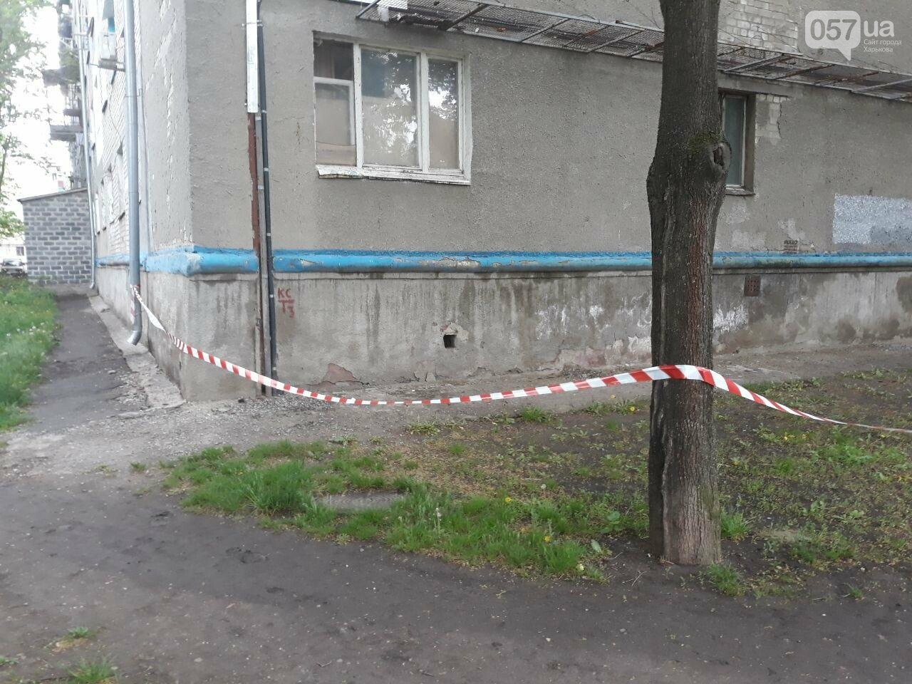 В Харькове силовики оцепили «пятиэтажку» и искали взрывчатку, - ФОТО, фото-7