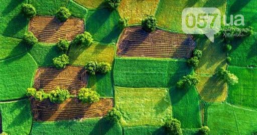 Возобновление действия договора аренды земли, фото-1