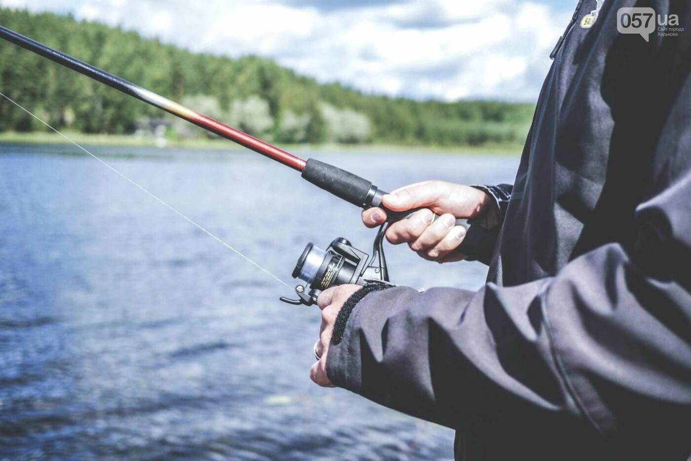 Рыбалка для начинающих: постигаем азы, фото-1