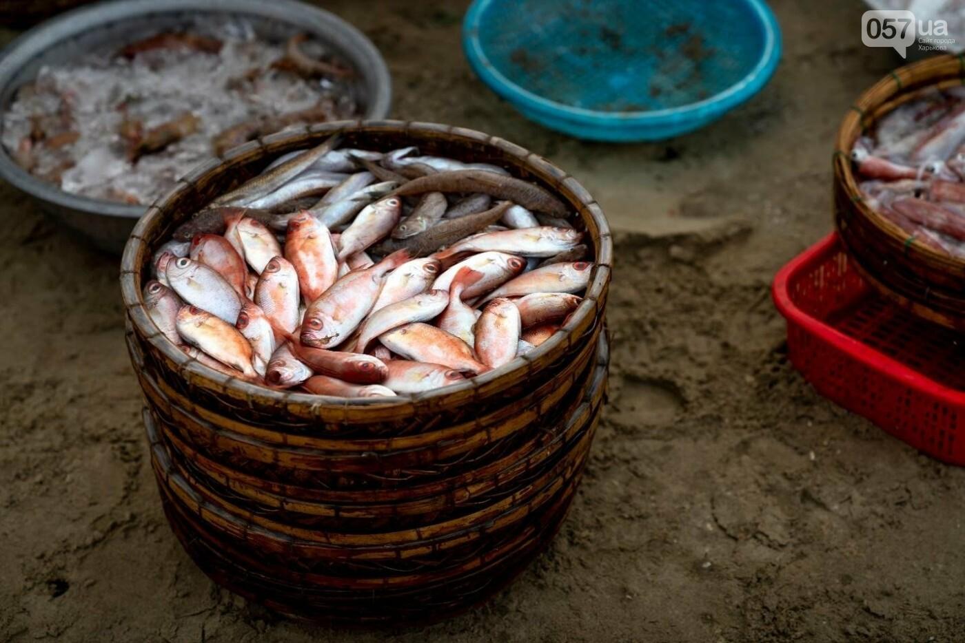 Рыбалка для начинающих: постигаем азы, фото-5