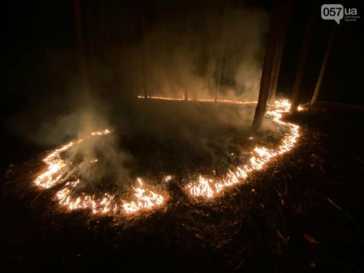 """""""Горит лес, нужна помощь"""": как мы тушили пожар в Чугуеве, - ФОТО, фото-8"""