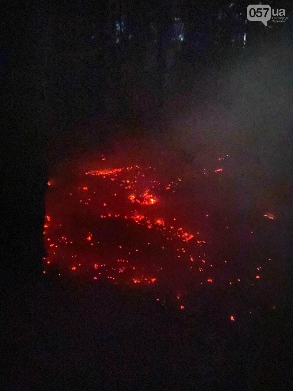 """""""Горит лес, нужна помощь"""": как мы тушили пожар в Чугуеве, - ФОТО, фото-4"""