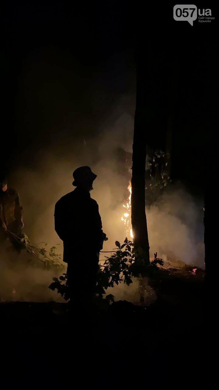 """""""Горит лес, нужна помощь"""": как мы тушили пожар в Чугуеве, - ФОТО, фото-5"""
