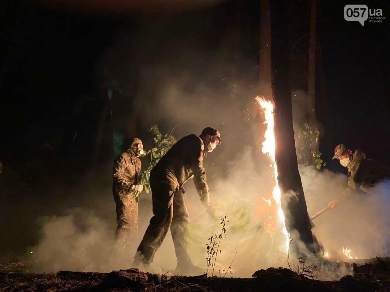 """""""Горит лес, нужна помощь"""": как мы тушили пожар в Чугуеве, - ФОТО, фото-6"""