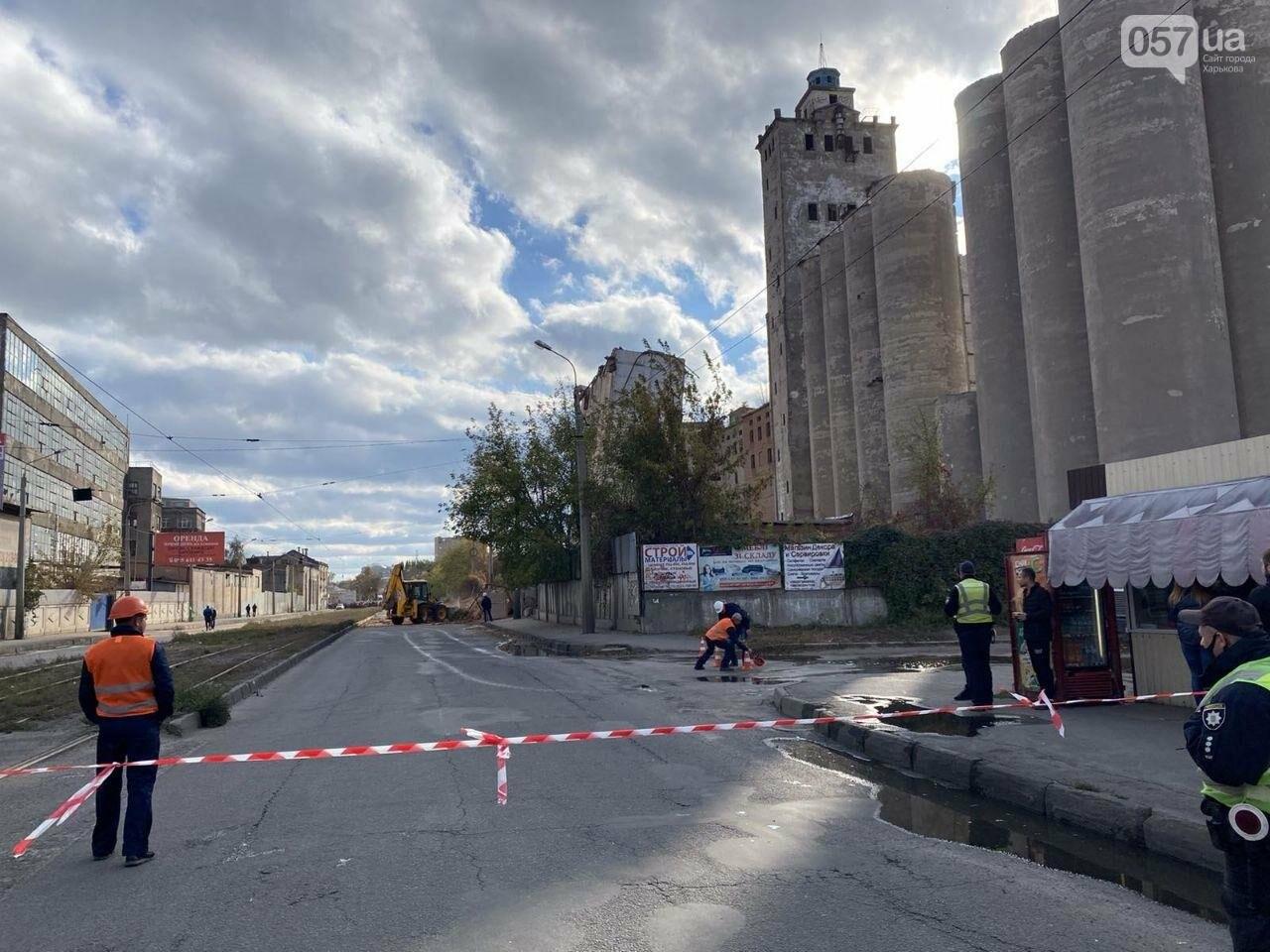 Во время сноса элеватора в Харькове часть старого здания устояла, - ФОТО, фото-6