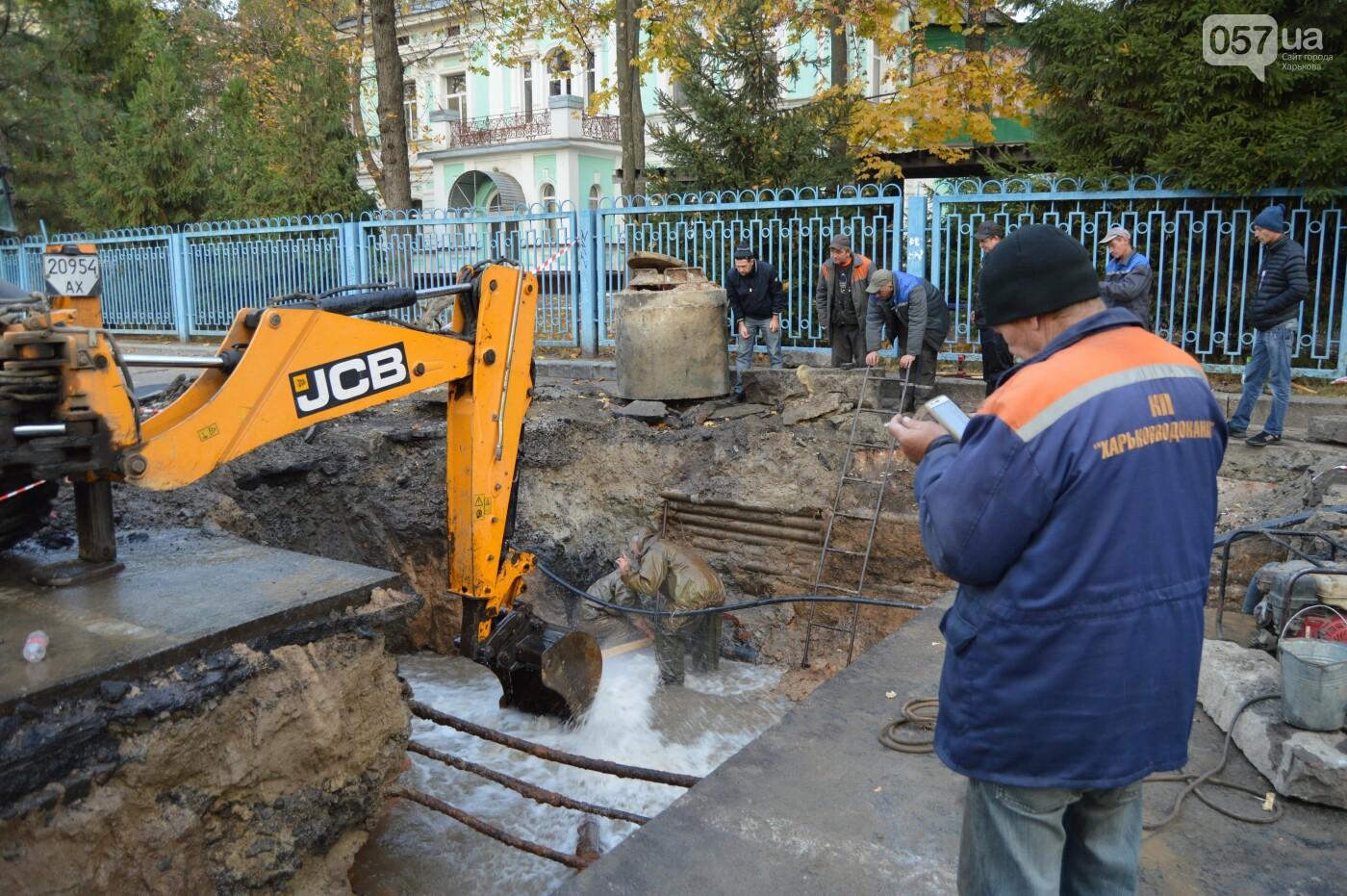 В центре Харькова повредили трубопровод: холодная вода залила улицу, - ФОТО, фото-6