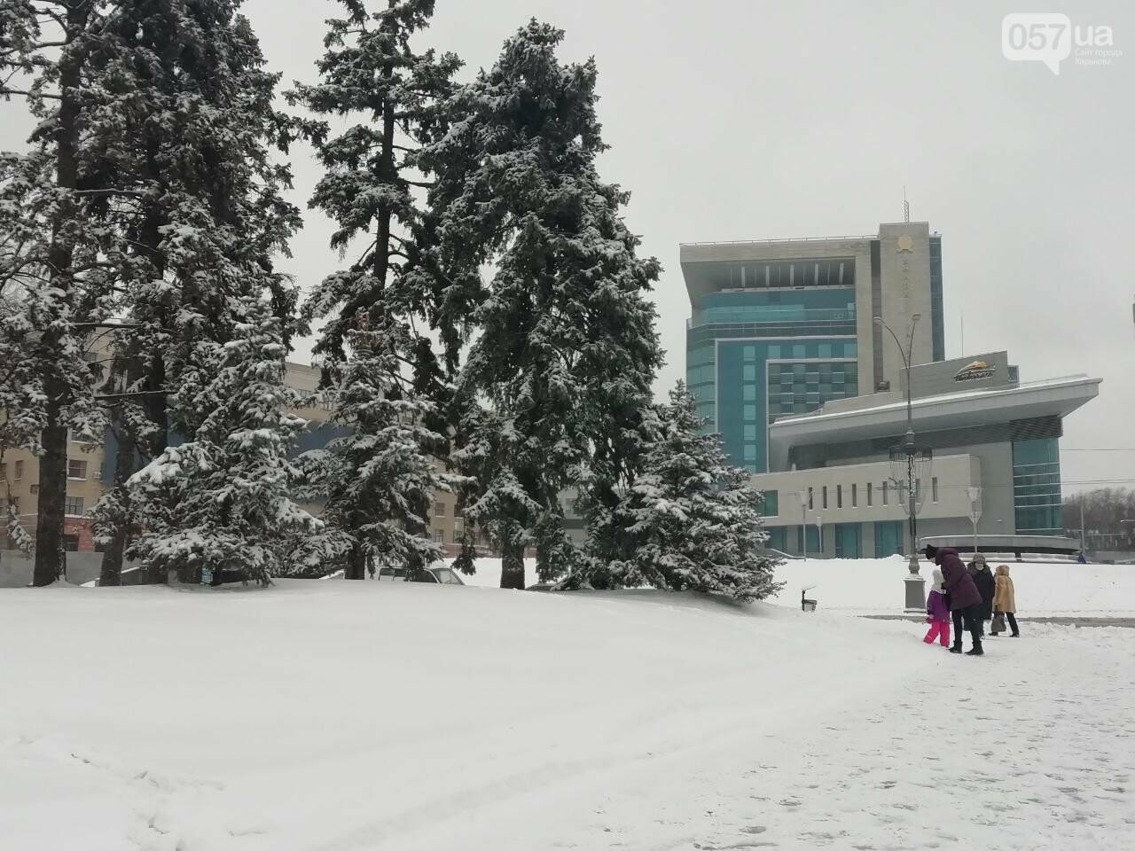 Площадь Свободы во время снегопада
