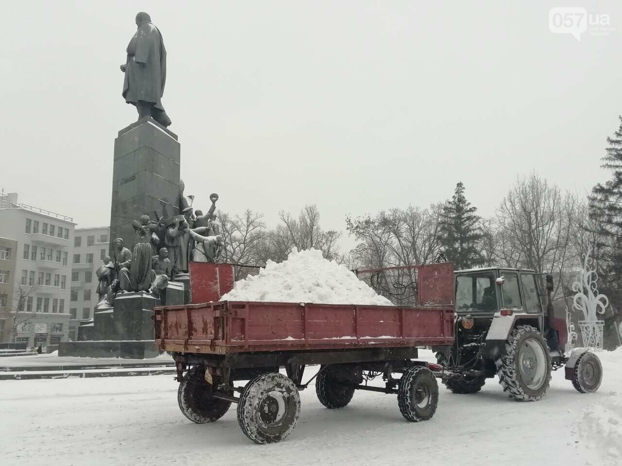 Зимний сад Шевченко