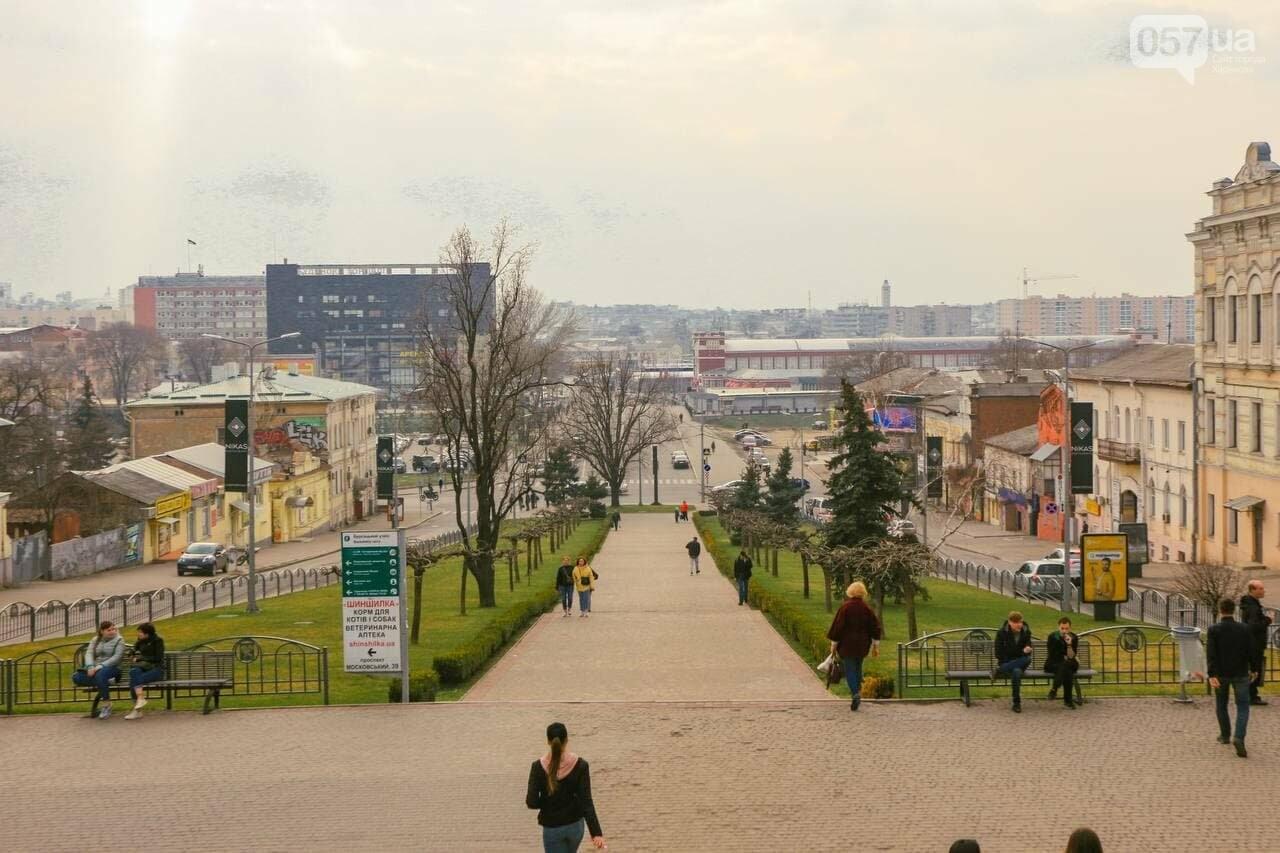 ТОП обзорных площадок Харькова, с которых открывается красивый вид на город, - ФОТО, фото-2