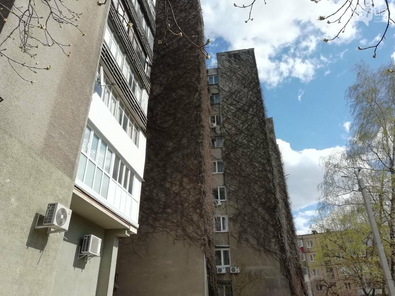 Дом на проспекте Героев Сталинграда