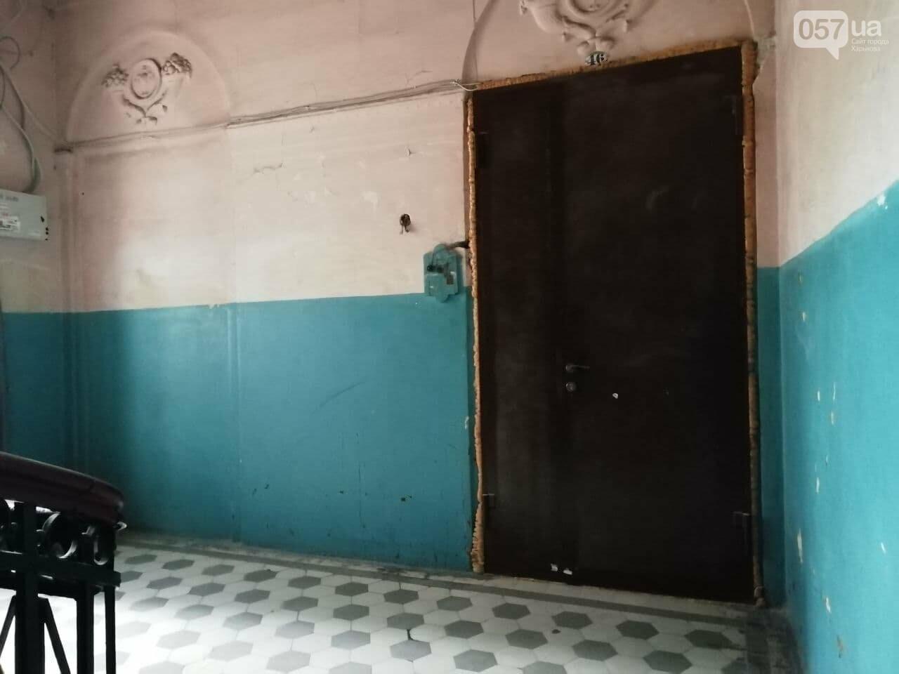 Квартира Шевелева в центра Харькова стала творческой резиденцией, - ФОТО, ВИДЕО, фото-2
