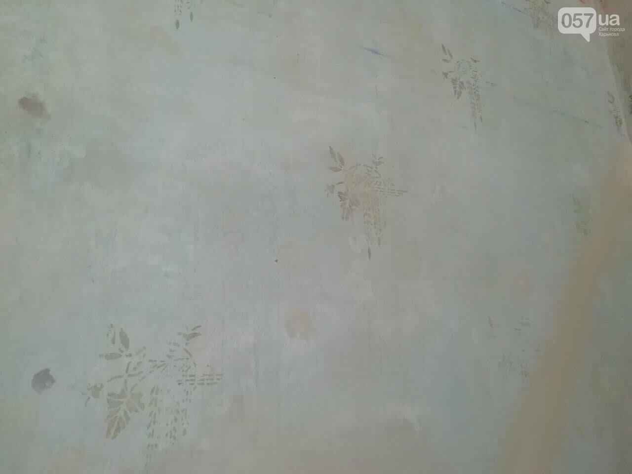 Квартира Шевелева в центра Харькова стала творческой резиденцией, - ФОТО, ВИДЕО, фото-11