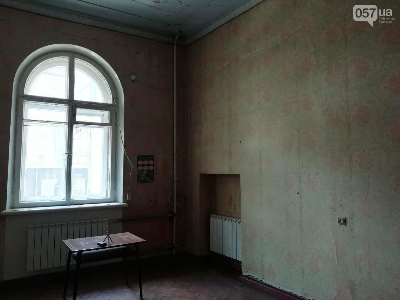 Квартира Шевелева в центра Харькова стала творческой резиденцией, - ФОТО, ВИДЕО, фото-7