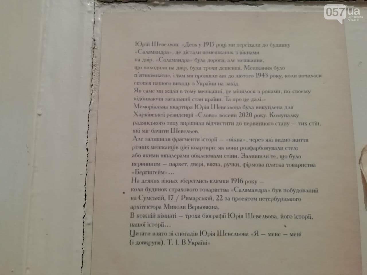 Квартира Шевелева в центра Харькова стала творческой резиденцией, - ФОТО, ВИДЕО, фото-16