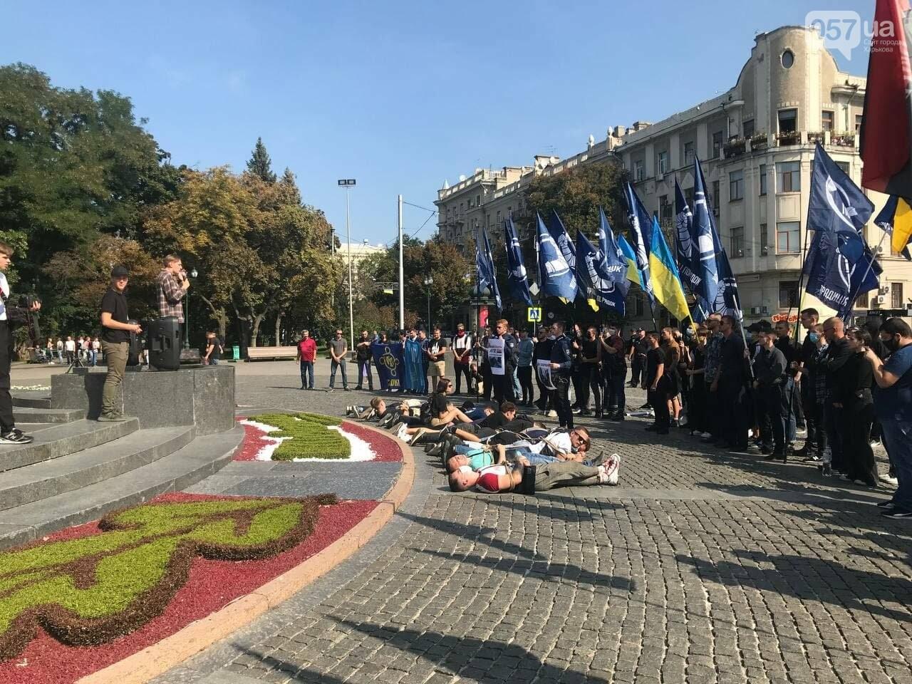 «Связанные» активисты и плакаты напротив дороги: в центре Харькова националисты митинговали против ЛГБТ-марша, - ФОТОРЕПОРТАЖ, фото-10