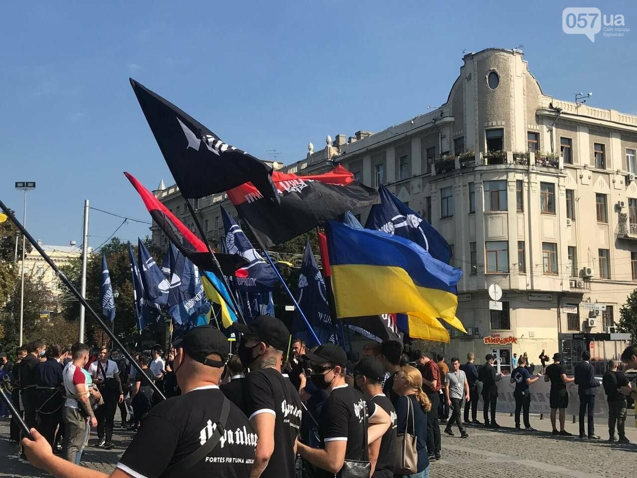 «Связанные» активисты и плакаты напротив дороги: в центре Харькова националисты митинговали против ЛГБТ-марша, - ФОТОРЕПОРТАЖ, фото-4