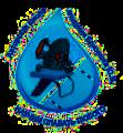 Обучение Дайвингу в школе плавания Близнюка
