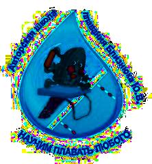 Логотип - Школа плавания Близнюка, бассейн