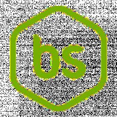 Логотип - Barsalata
