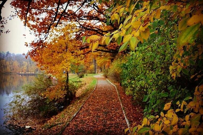 Погода в Харькове завтра: прогноз на 29 октября