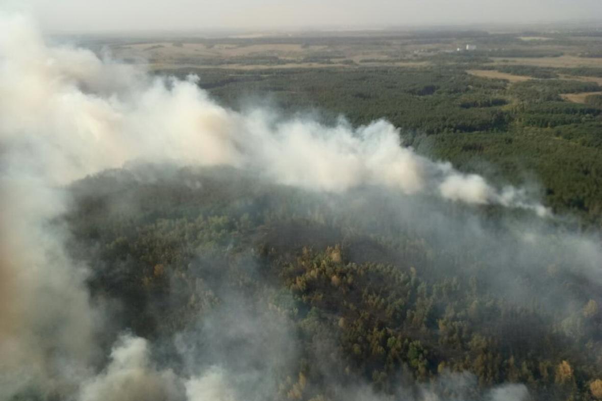 На Харьковщине спасатели тушат крупный лесной пожар (ФОТО), фото-2