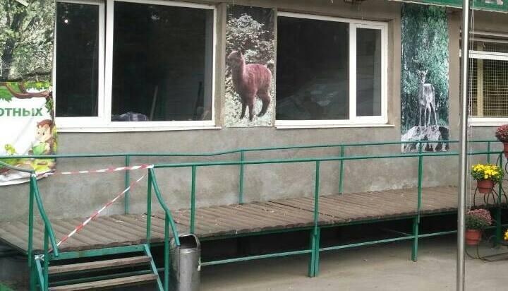 Под Харьковом обезьяны откусили работнику зоопарка ухо и несколько пальцев (ФОТО) , фото-1