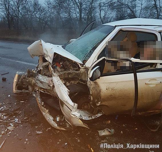 Лобовое столкновение Skoda и Chevrolet под Харьковом: погибший и 5 пострадавших (ФОТО), фото-3