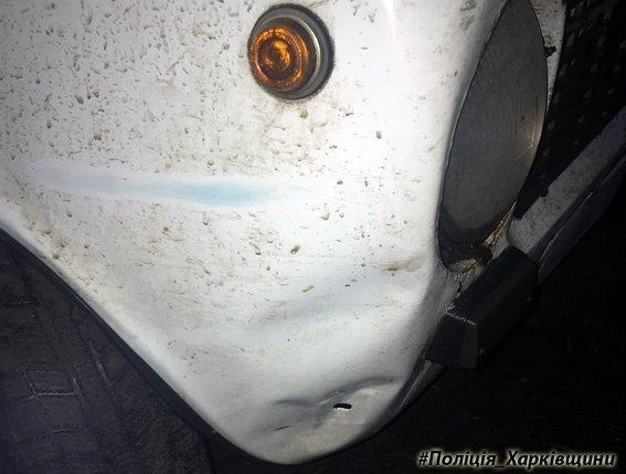 На Харьковщине задержали водителя, который сбил мужчину и сбежал (ФОТО), фото-1