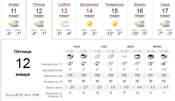 Из-за аномально теплой зимы в харьковском ботсаду появились почки на деревьях , фото-1