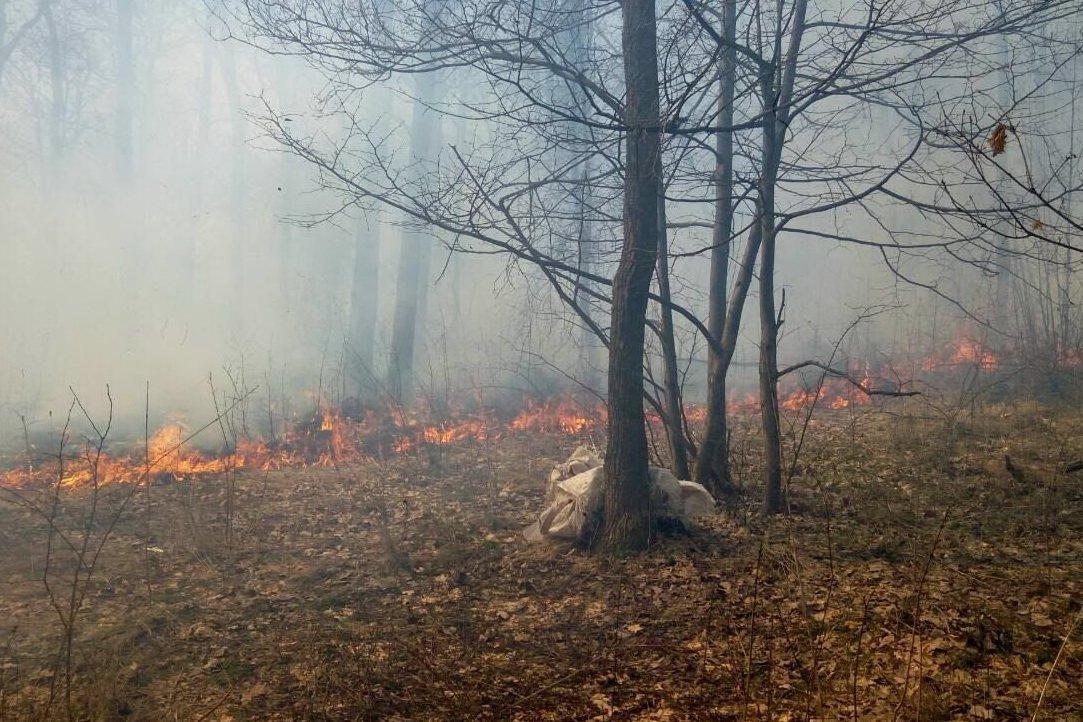Под Харьковом  женщина упала в горящий овраг (ФОТО), фото-2