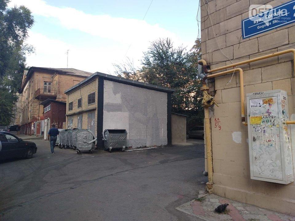 «Это шизофрения»: в центре Харькова залили краской граффити известного художника, - ФОТО, фото-2