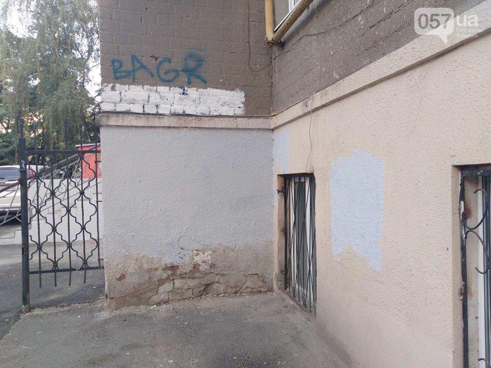 «Это шизофрения»: в центре Харькова залили краской граффити известного художника, - ФОТО, фото-9